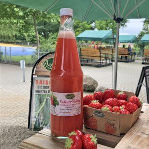 Erdbeer Nektar